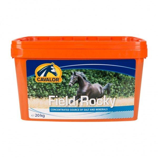 Cavalor Lick Field Rocky
