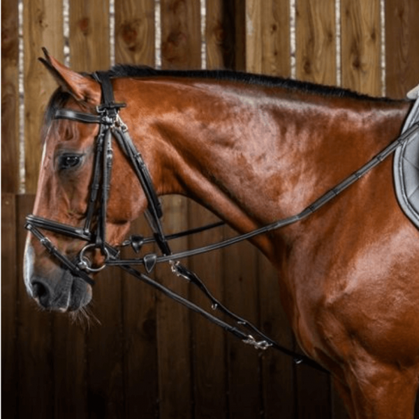 Dyon Gogue Auxiliary Reins WC