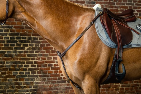 Dyon 3-Point Breastplate DC with Bridge
