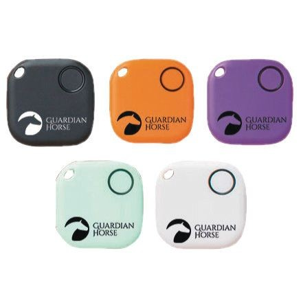 Guardian Horse Accident Tracker